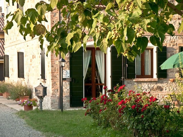 Agriturismo Il Brugnolo  Angelica apartment - Scandiano - Appartement