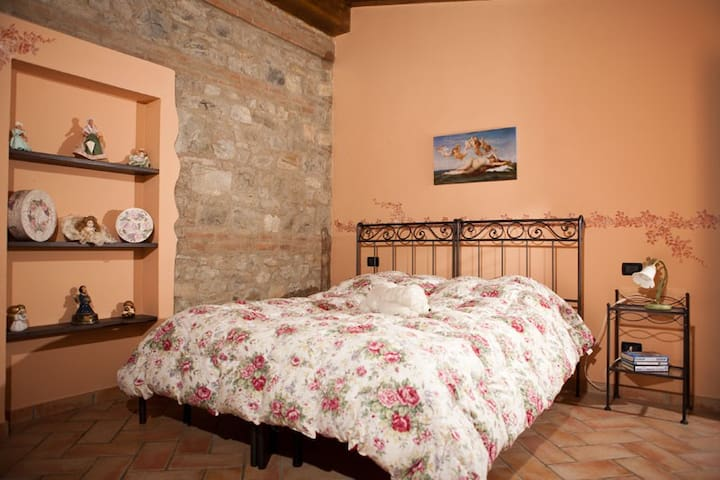 Agriturismo il Brugnolo Melissa apartment - Scandiano - House