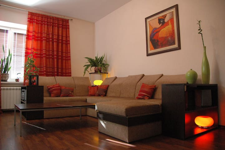 Modern and comfortable apartment. - Novosibirsk - Apartment