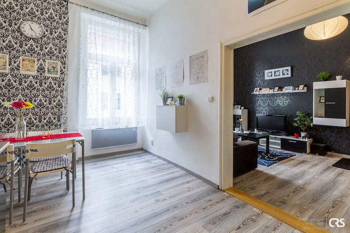 Comfy flat, central station 10mins - Prague - Apartment