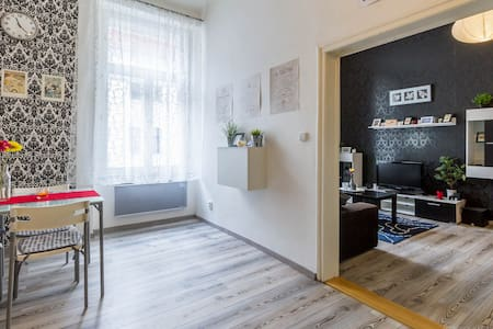 Comfy flat, central station 10mins - Prague