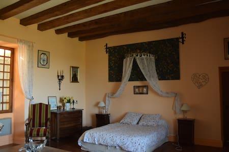 Chambre très spacieuse dans château - Trélissac