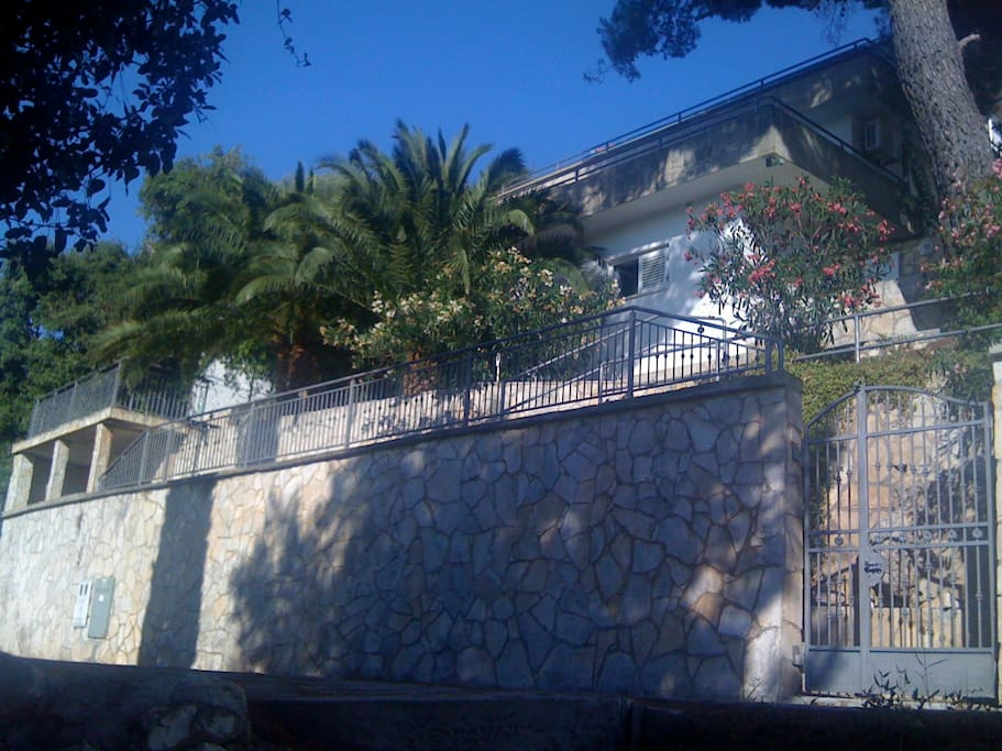 Beautiful 3 floor mediterranean house with huge tropic trees and plan,only 5 meters from sea