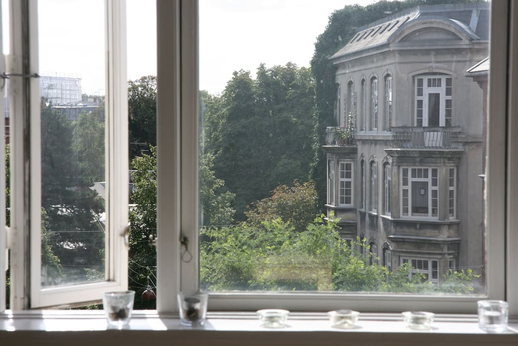 View from dining room. South west facing windows with lots of light.