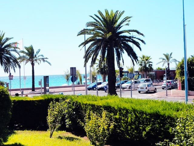 Azur et palmier pour être dépaysé !