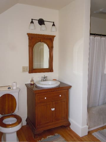 Bathroom with combo shower/tub
