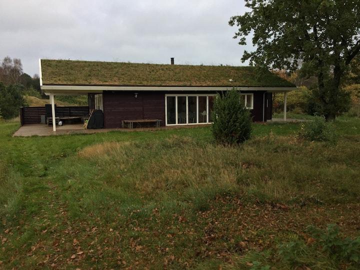 Grenå, naturgrund, nyt hus og DK bedste strand