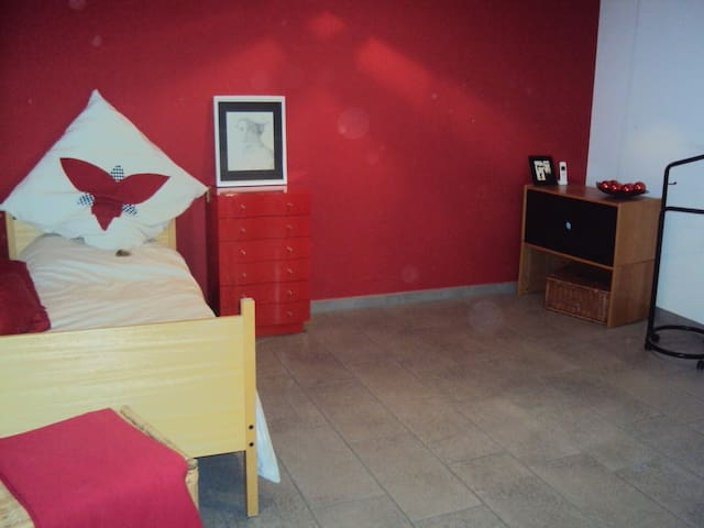 spacious room with semi-private bathroom - Thalwil - Apartment