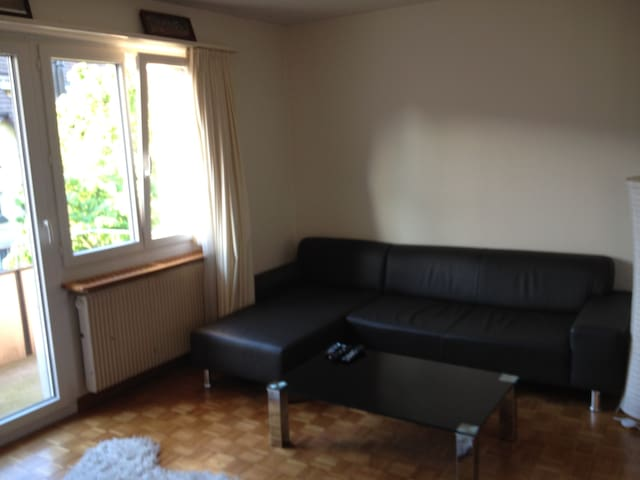 Appartment In Z 252 Rich Albisrieden Bed And Breakfasts For