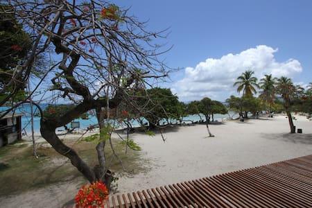 One Bedroom Studio Sapphire Beach - St.Thomas U.S. Virgin Islands