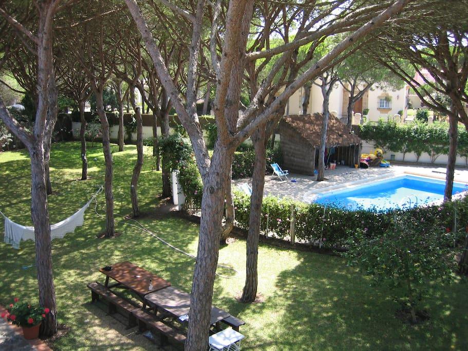 Beachside Villa In Pine Tree Garden Casas De Campo En