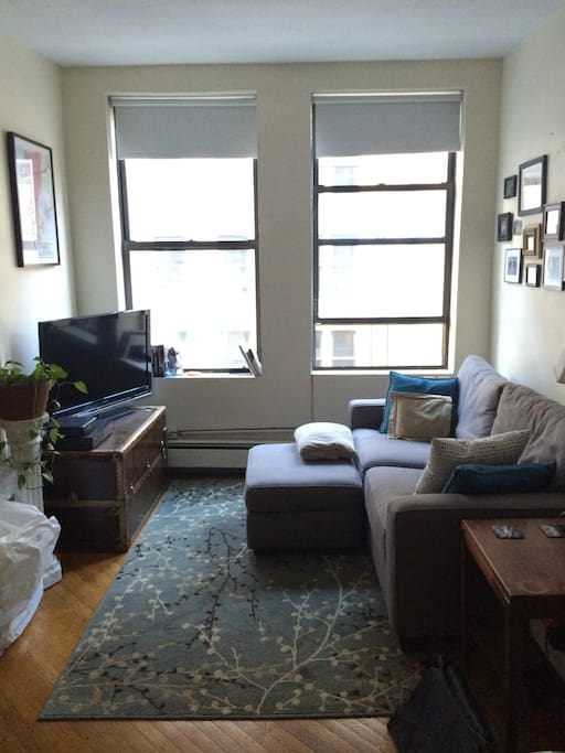 Brooklyn Heights 1 Bedroom Apartments For Rent In