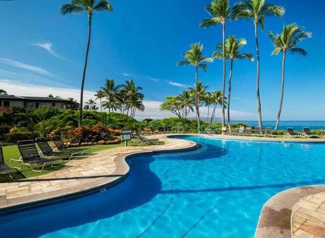 A piece of Wailei paradise for you to enjoy! - Kihei - Condominium