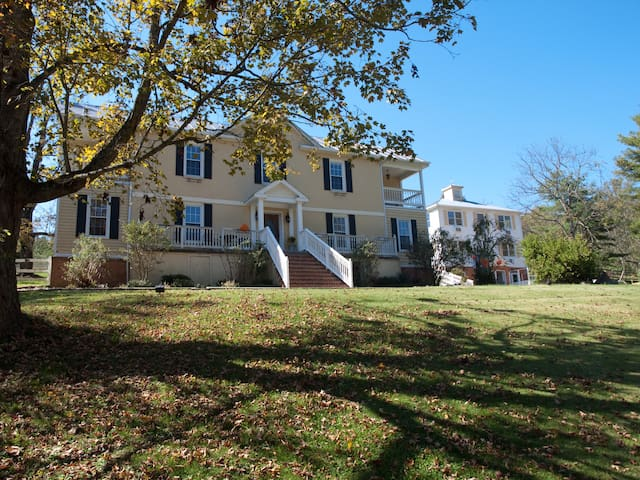 Shenandoah Manor B&B - Guest House - Lexington - Bed & Breakfast