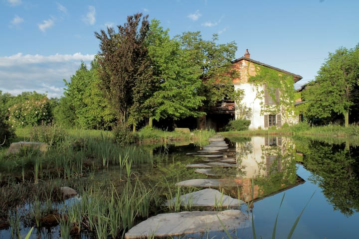 Old Farmhouse with natural pool in vineyards