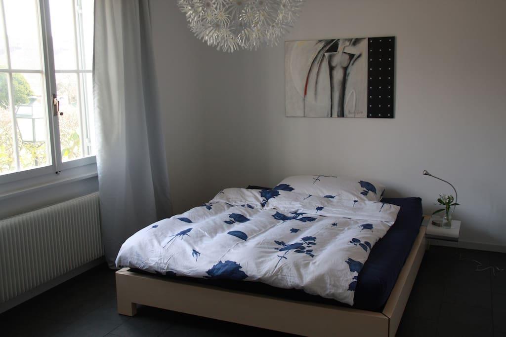 Grosszügiges Schlafzimmer