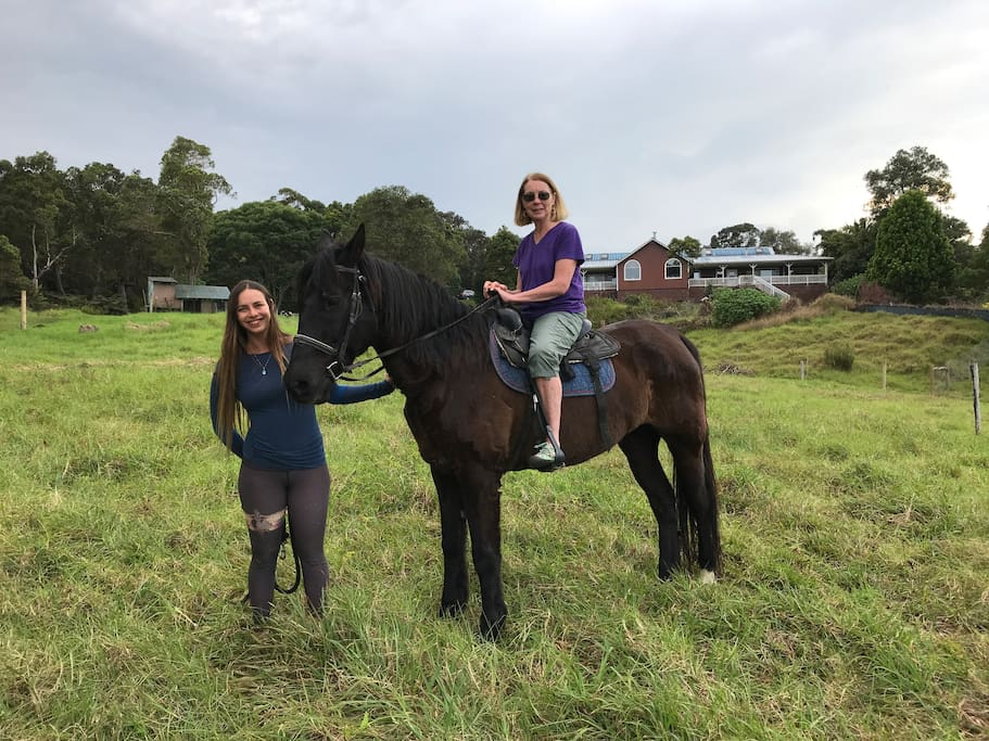 Horse riding lessons available