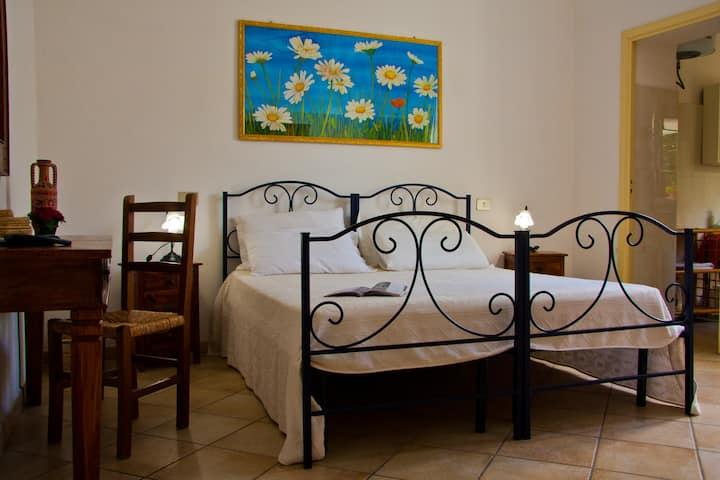 Daisy Room - Janas Olbia