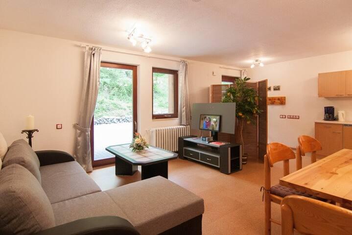 Haus Wildstein Gästezimmer D2.2 - Traben-Trarbach - Apartment