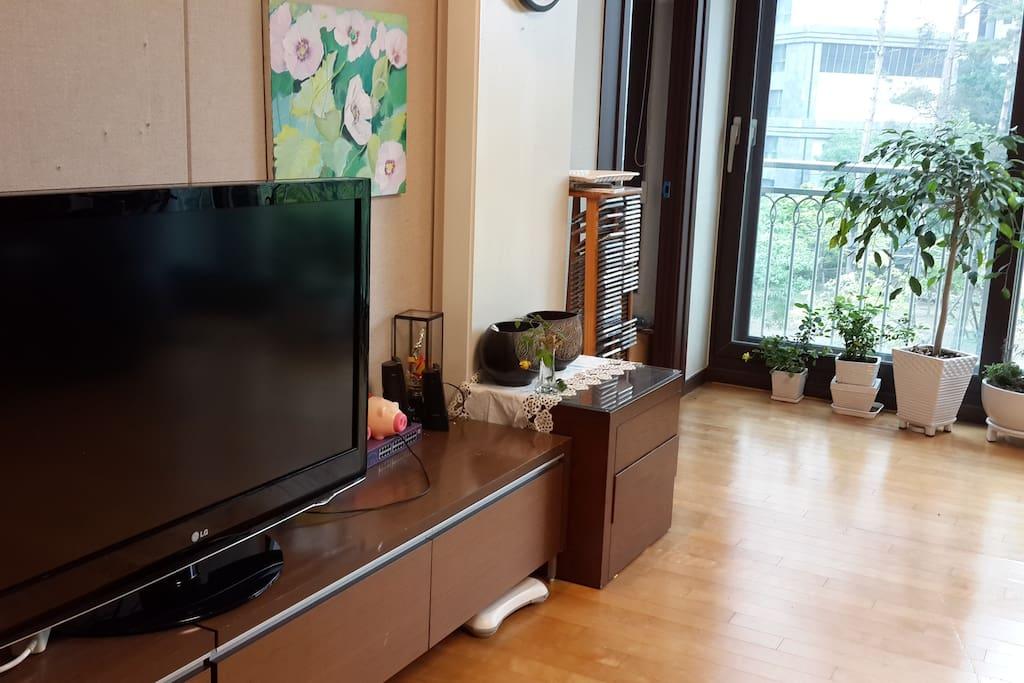 Living room (TV)