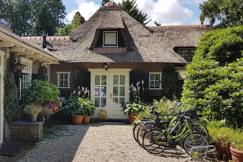 Beautiful cottage in the centre of Laren