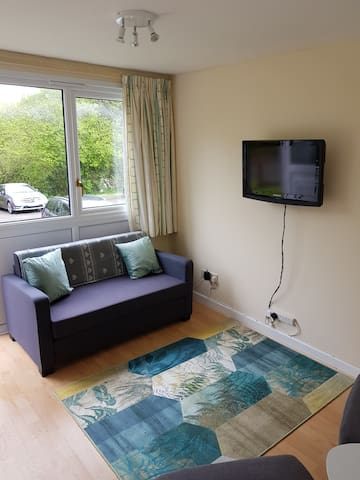 Living room with fold out sofa bed and roku smart tv
