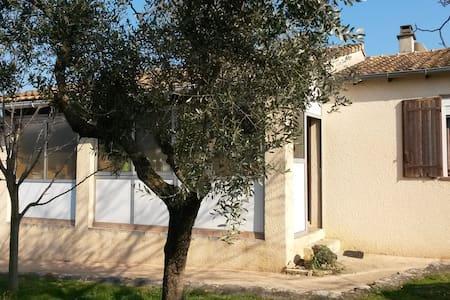 Maison individuelle avec jardin - Fons - House