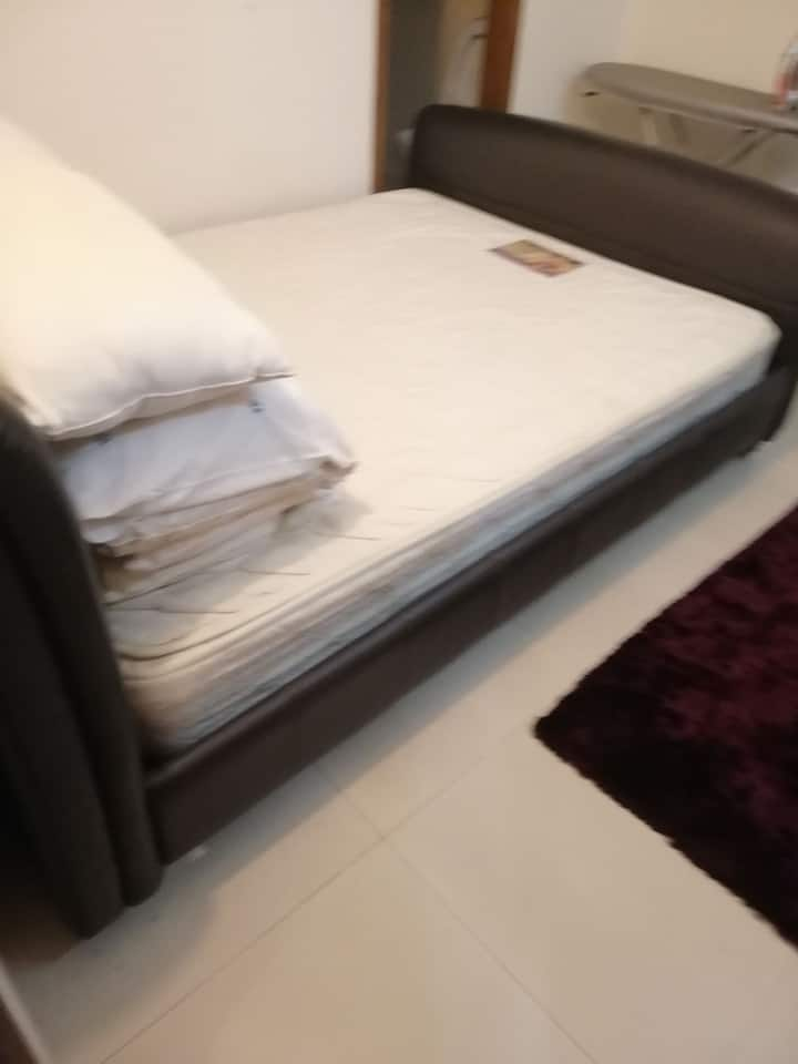 Furnished apartment rent gulshan