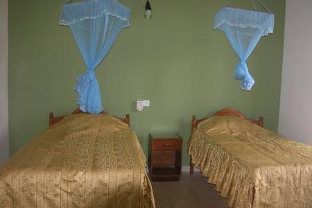 Green and gold room- Samyama - Thalahena