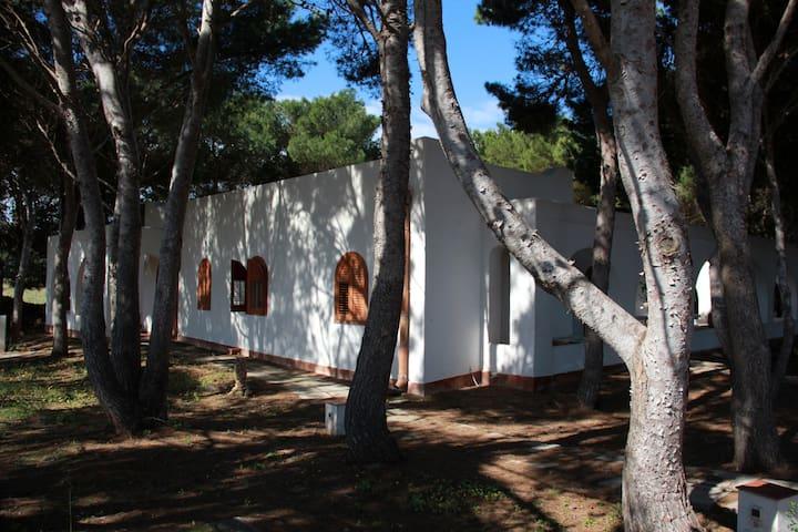 VILLA IN PINETA  Punta Sottile FAVI - Favignana - Villa