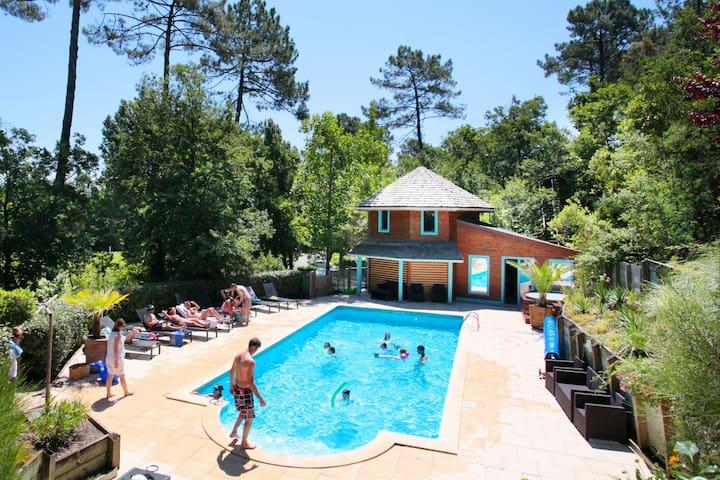 Gite 2/4p, piscine et spa - Messanges - Apartament