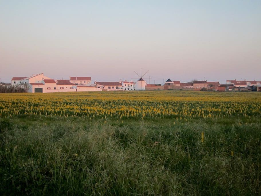 The village, Longueira, from the fields.