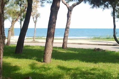 A 100 mt dal mare vicino ai servizi - Villa Rosa