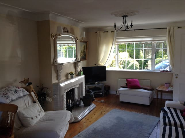 Friendly Private Room South Dublin - Dublin - Huis