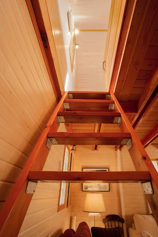 Ladder up to the loft bedroom.