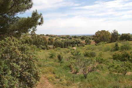 natural farm with sea view - S'ena e Sa Chitta