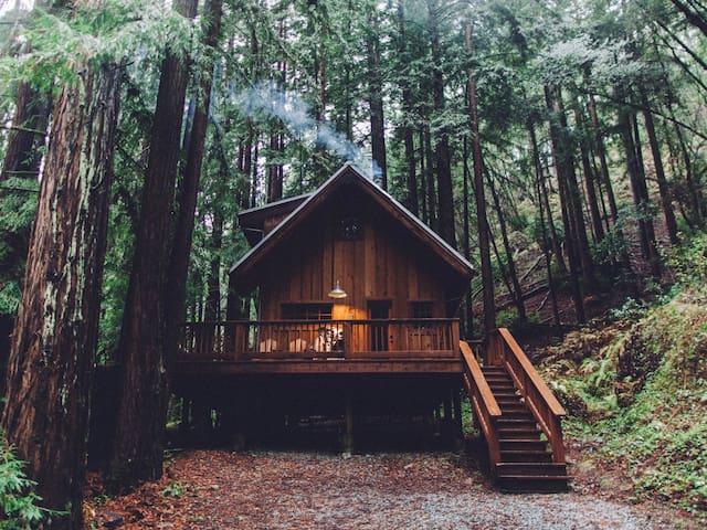 HWY 1 Coastal Cabin Retreat Santa Cruz County
