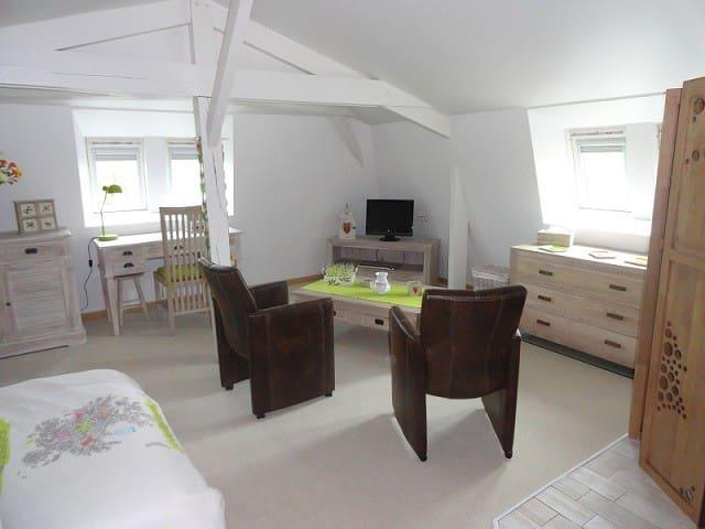 Chambre spacieuse près de Saumur. - Saumur - Bed & Breakfast