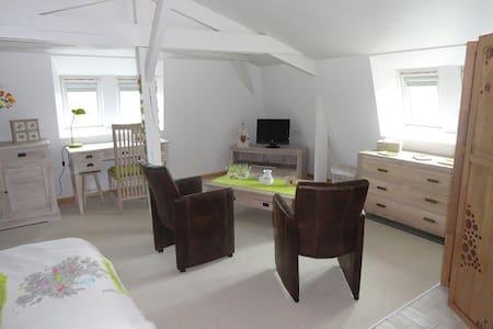 Chambre spacieuse près de Saumur. - Saumur