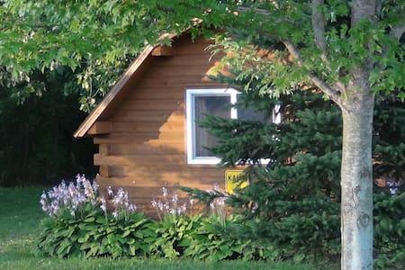 Rustic One Room Cabin - Covert - Kulübe