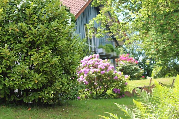 Gästehaus Linde am Rothenberg