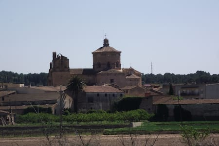 A peaceful haven on the Ebro - Ginestar