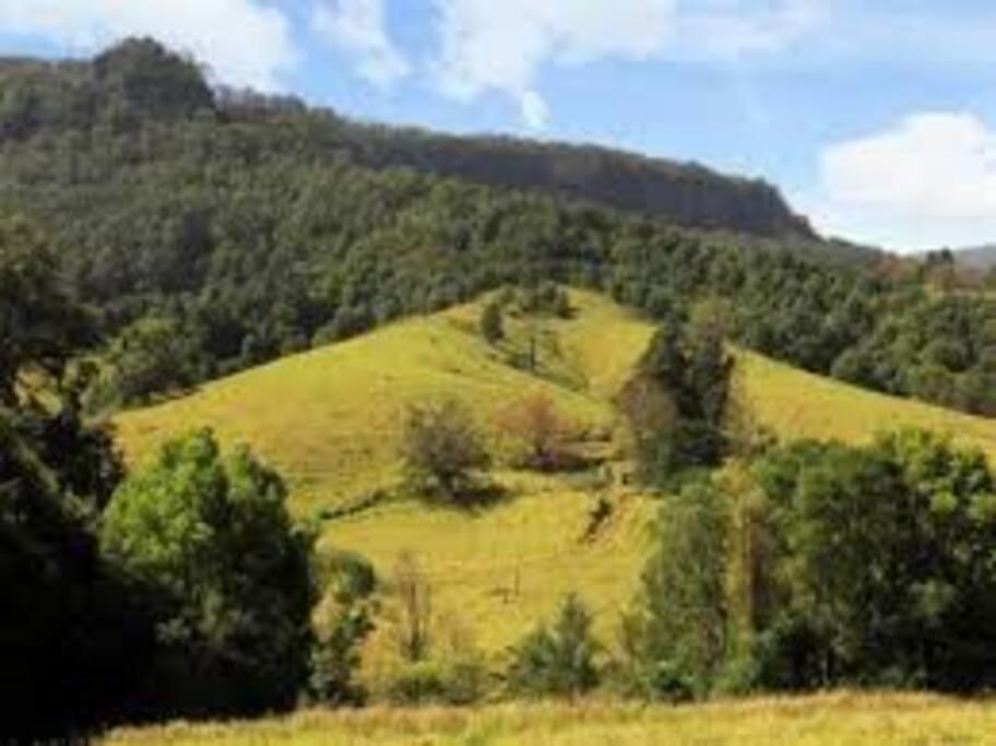 Views to Cambewarra Mountain