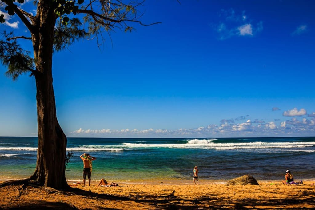 Rooms For Rent In Hawaii Oahu