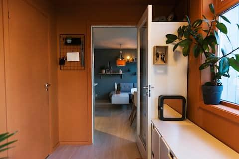 Perfekt liten leilighet i Gamle Oslo!