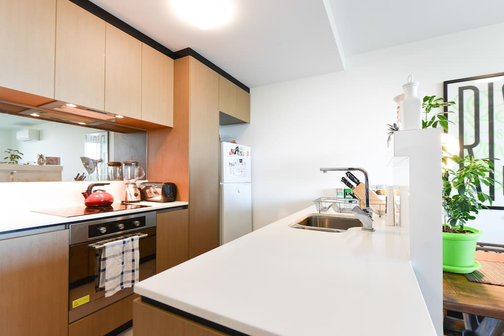 Spacious Kitchen overlooking the Apartment