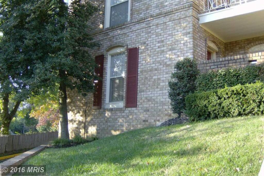 Falls Church Very Cozy And Sunny One Bedroom Condo Apartments For Rent In Falls Church