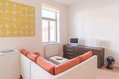 Apartment Sirius E in the centreČB. - České Budějovice