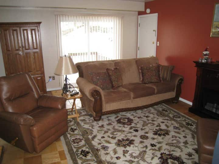 Gorgeous fully furnished condo