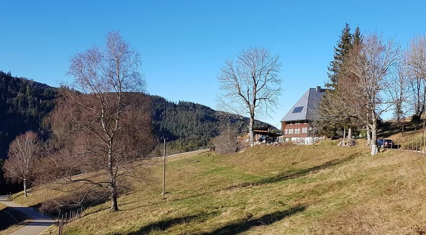 """Feißesberghof, (Triberg), Ferienwohnung """"Bosse"""", 1 Wohn-/Schlafraum, max. 2 Personen"""